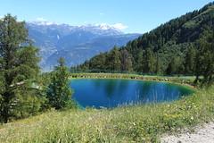 lac artificiel (bulbocode909) Tags: valais suisse ovronnaz lacs montagnes nature forêts arbres paysages mélèzes vert bleu lacsartificiels