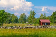 No rain today (RdeUppsala) Tags: uppland hållnäs paisaje landscape landskap countryside verano campo naturaleza nature natur nubes moln clouds cielo sky sverige suecia sweden summer sommar ricardofeinstein stuga cottage cabaña
