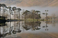 Shrouded In Secrets (jeanette_lea) Tags: landscape buttermere pines the lake district cumbria united kingdom sunrise dawn lowlight mist water fells reflections stones