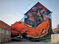 Bastardilla & Erica Il Cane / Ham - 19 jul 2018 (Ferdinand 'Ferre' Feys) Tags: gent ghent gand belgium belgique belgië streetart artdelarue graffitiart graffiti graff urbanart urbanarte arteurbano ferdinandfeys bastardilla ericailcane