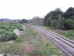 66 740 4E21 Trafford Park to Doncaster Roberts Road (plarailfan) Tags: 66740 66 740 mirfield heaton lodge freight train