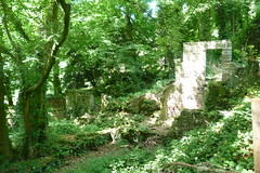 (steve p2008) Tags: lumsdale derbyshire june2018 ruin woodland trees