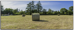 Brenizer round bale of hay (Ger Donovan) Tags: nikond500 sigma50mmf14art brenizermethod roundbaleofhay borderaddedinphotoshop