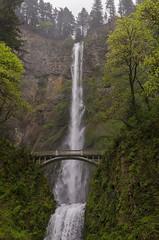 The Bridge II (rschnaible (On Holiday)) Tags: multnomah falls pacific northwest oregon us usa outdoor forest woods water landscape bridge