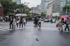 L1009553 (irenekylo) Tags: leicam10 tokyo street irenemama japan