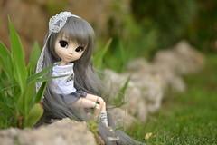 Kyoto (-gigina-) Tags: doll pullip sapphire rewigged rechipped nikon d3100 50mm obitsu grey