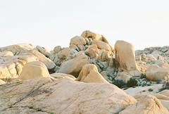 untitled (What fools these Mortals be!) Tags: hoodoo sandstone desert mojave yucca naturalcurves joshuatree californiadreaming nikon f65 kodak ektar film 35mm filmisnotdead enjoybeing