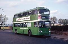 Gillingham Strand (DaveAFlett) Tags: gcn804g daimler fleetline md maidstonedistrict nbc nationalbuscompany