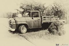 180619-04 Pickup Inter (clamato39) Tags: camion pickup truck old ancient vieux sepia sépia monochrome provincedequébec québec canada