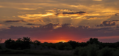 Sunset quickie.... (Kevin Povenz Thanks for all the views and comments) Tags: 2018 july kevinpovenz westmichigan ottawa ottawacounty hudsonville sunset sun evening outside outdoors canon7dmarkii dusk clouds jesusrays trees