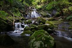 Mt.Nagi / Okayama (Kashinkoji) Tags: sony a77 slt α mountain waterfall stream nature long japan