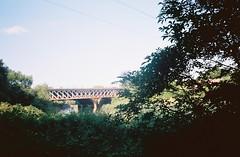 The railway bridge from the closed path (knautia) Tags: isambardkingdombrunel avonbridge riveravon bridge railwaybridge bristol england uk june 2018 film ishootfilm olympus xa2 olympusxa2 kodak ektar 100iso nxa2roll32 brunel avon river