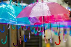 umbrellas (66Colpi) Tags: ombrelli appesi colori mergozzo lagodimergozzo vicoli manicodombrello