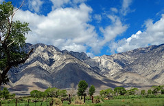 Cloud Shadows, Sierra Nevada Range, Big Pine, CA 2015 (inkknife_2000 (9.5 million views)) Tags: easternsierranevada california usa landscapes mountains snow shadowsonmountains dgrahamphoto skyandclouds shadows trees fences sunandshadows tree oldfence bigpineca