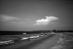 The beach (Rosenthal Photography) Tags: washis50 indien ff135 chennai rodinal12520°c11min bnw 20180601 schwarzweiss bw 35mm olympus35rd analog asa50 beach india sea landscape nature spring may sun sunny olympus olympus35 35rd fzuiko zuiko 40mm f17 washi washis rodinal 125 epson v800