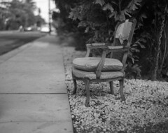 Seating for One (PositiveAboutNegatives) Tags: leica rangefinder m3 leicam3 carlzeiss 50mm sonnar zeiss50mmsonorf15 postwar dof film analog bw blackandwhitefilm foma fomapan fomapan100 foma100 aristo kodak hc110 dilutionb coolscan nikon9000 lakeworth florida trashday garbage amedeoadapter