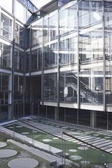 Emparejados. (elojeador) Tags: cristal hierro madera cemento línea círculo baranda escalera escalón hierba matorral reflejo colegiodearquitectosdemadrid colegiooficialdearquitectosdemadrid conlosaparejados elojeador