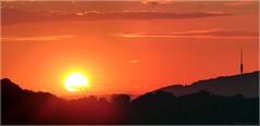 Stilleben mit Fernsehturm / sunset over Dresden (Christoph Bieberstein) Tags: deutschland sachsen germany saxony obervogelgesang königsnase sonnenuntergang sundown dresden dresdner fernsehturm sonne sun slunce abendrot juni june abendstimmung abendlicht abendhimmel abend