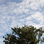 the sky of taipei thumbnail