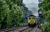 66525 (Peter Leigh50) Tags: freight freightliner class 66 shed containers railway railroad rail train trees track footpath fujifilm fuji xt2 smoke exhaust