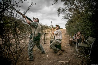 Argentina Luxury Dove Hunting 37