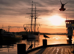 Moody Dusk (YogiMik) Tags: oslo norway evening boats water dusk sunset sky birds goldcollection greatphotographers spooky