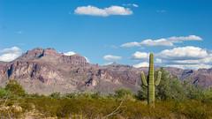 #Arizona as seen by #ArturoNahum (Arturo Nahum) Tags: arizona desierto desert landscape travel