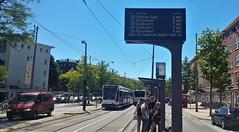 Het staat geschreven (Peter ( phonepics only) Eijkman) Tags: amsterdam city detour omleiding roadworks wegwerkzaamheden gvb transport tram trams tramtracks trolley rail rails streetcars strassenbahn nederland netherlands nederlandse noordholland holland