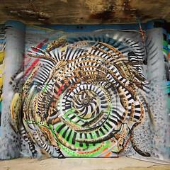 When we go wild / #art by #CeePil. . #Gent #Belgium #streetart #graffiti #urbanart #graffitiart #streetartbelgium #graffitibelgium #visitgent #urbanart_daily #graffitiart_daily #streetarteverywhere #streetart_daily #ilovestreetart #igersstreetart #gentje (Ferdinand 'Ferre' Feys) Tags: instagram ceepil gent ghent gand belgium belgique belgië streetart artdelarue graffitiart graffiti graff urbanart urbanarte arteurbano ferdinandfeys
