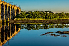 Still waters (Peter Leigh50) Tags: viaduct bridge railway railroad rail reflection river berwick tweed sunshine evening train trees high speed hst cross country fujifilm fuji xt2