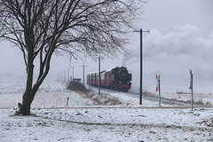 Snow! 99 2321 Steilküste 22-03-2018 (Spoorhaar) Tags: boom baum tree steilküste molli doberan kühlungsborn steam dampf winter hiver vapeur narrow gauge smalspoor 900mm transport trein train dampfzug regulier tanago excursie excursion fotohalt fahrt eisenbahn dampfeisenbahn museum museumseisenbahn lok locomotive 992321 machine snow schnee sneeuw koud kalt dr germany deutschland duitsland allemagne