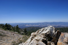 Mt Pinos, Sawmill Mountain, Los Padres National Forest (Danielle_M_Bedics) Tags: mtpinos sawmillmountain lospadresnationalforest butterfly lizard hornedlizard mountain nature chumash wilderness chumashwilderness meadow yarrow carin
