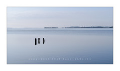 And Then There Were Three Again (RonnieLMills 5 Million Views. Thank You All :)) Tags: rotten wooden posts three islandhill flat calm high tide strangford lough comber newtownards county down northern ireland calming serene peaceful trio threesome