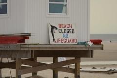 Beach Closed (padraicsmeehan) Tags: beach sunandsurf sand birds coast longisland atlanticbeach ny newyork unitedstates usa america beachclub ocean atlanticocean shark closed stencilsign lifeguardshack
