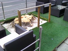 a europe that protects (gk__) Tags: fakegrass umweltschutz nature naturamorta martwaochronaśrodowiska zmartwienienatury naturschutz austria vienna ratspräsidentschaft nützlinge achsederwilligen horst towarzyszebroni
