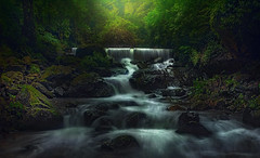 Rain forest .. (tchakladerphotography) Tags: stream river waterfall forest nature atmosphere monsoon rain colors light longexposure d90 mood landscape india travel