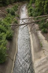 Concrete channel of the West Don River, Toronto (Jon Dev) Tags: bushes slopes streamflow