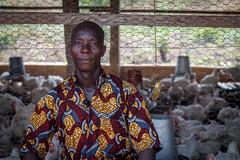 USAID_PRADDII_CoteD'Ivoire_2017-183.jpg (USAID/Land) Tags: chickens man 2017 economicgrowth chickencoop customaryandcommunitytenure cotedivoire propertyrightsandartisanaldevelopmentiipraddii dwyer john ivorycoast cdi artisanal mining