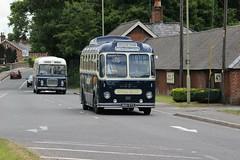 IMGD3023 Royal Blue 1286 MOD973 1460 OTA632G Romsey 16 Jun 18 (Dave58282) Tags: bus royalblue 1286 mod973 bristol ls 1460 ota632g relh preserved