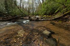 Light Along Hills Creek (Ken Krach Photography) Tags: westvirginia