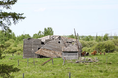 Has Seen Better Days (Mick L.) Tags: barn ruin collapsed betterdays