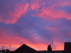 June Sky (cycle.nut66) Tags: sky dusk pink blue clouds roofline roof tops twilight olympus epl1 evolt micro four thirds mzuiko