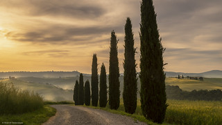 A Misty Morning in Tuscany