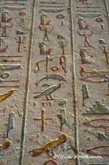 Hieroglyphs from KV11 (konde) Tags: 20thdynasty ramsesiii tomb hieroglyphs hieroglyfejä newkingdom kv11 valleyofthekings luxor ancientegypt thebes