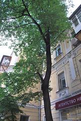 Шовковична вулиця, Київ  InterNetri Ukraine 603
