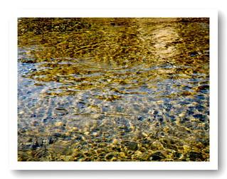 Golden times at Nestos river......Makedonia......Greece