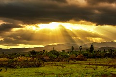 Dareshe Sunset (Rod Waddington) Tags: africa african afrique afrika äthiopien ethiopia ethiopian ethnic etiopia ethnicity ethiopie etiopian culture cultural landscape sunset clouds village people farming farm animals trees huts traditional tribe tribal dareshe outdoor omovalley omo