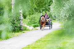 horse carriage in Kuopio (VisitLakeland) Tags: finland kuopio horse road carriage käärit hevoskärryt vossikka tie hiekkatie