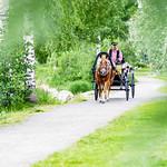 horse carriage in Kuopio thumbnail