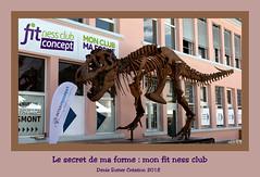 Le secret de ma forme - The secret of my form (Terra Pixelis) Tags: alsace hautrhin 68 nikond810 saintemarieauxmines fossile tyrannosaure squelette dinosaure